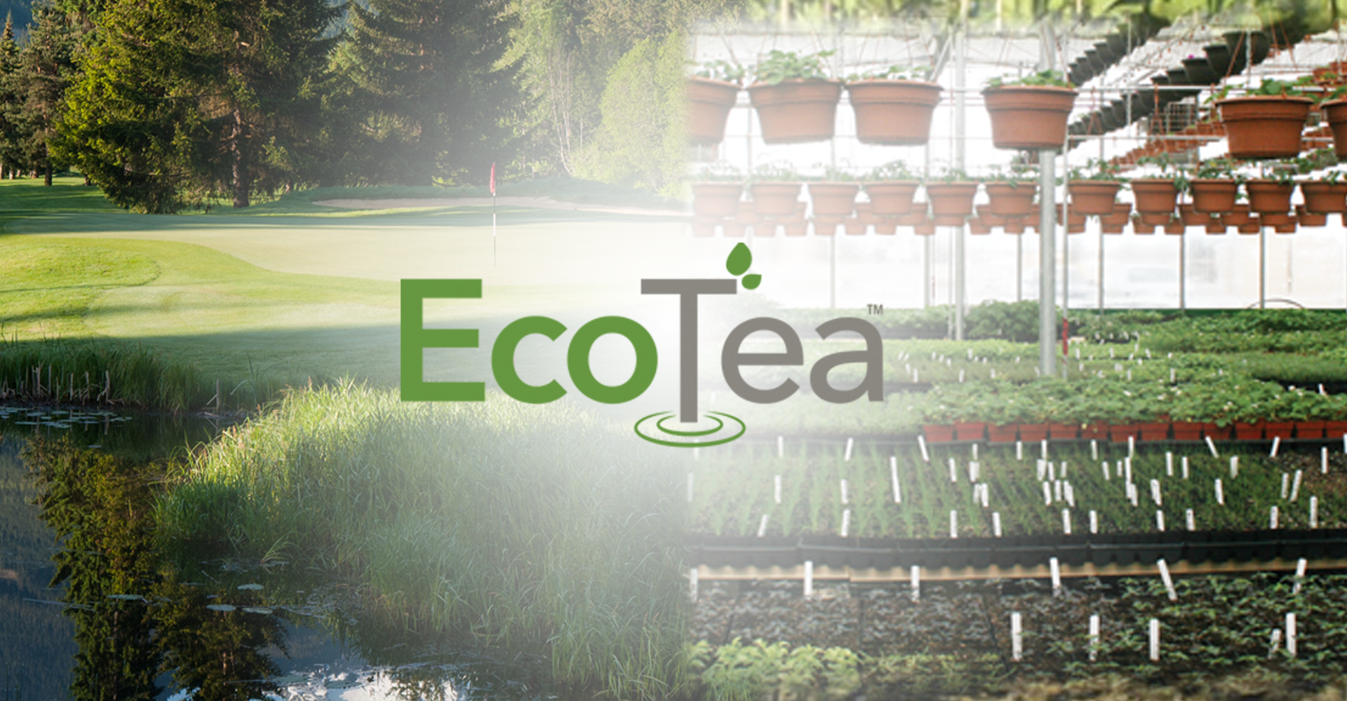 Eco-Tea will help decrease pathogen stree from bacteria, fungi, nematodes and some insects.